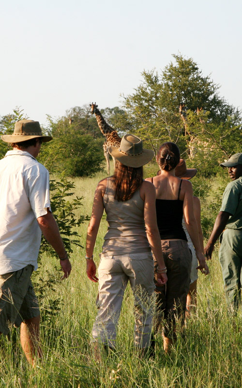 12 Days Tanzania Family Safaris