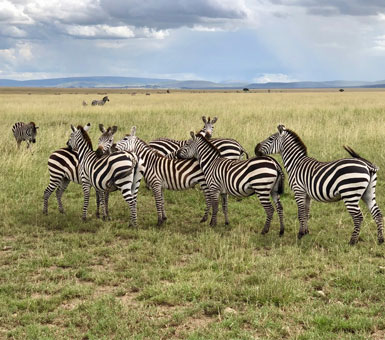Serengeti National Park