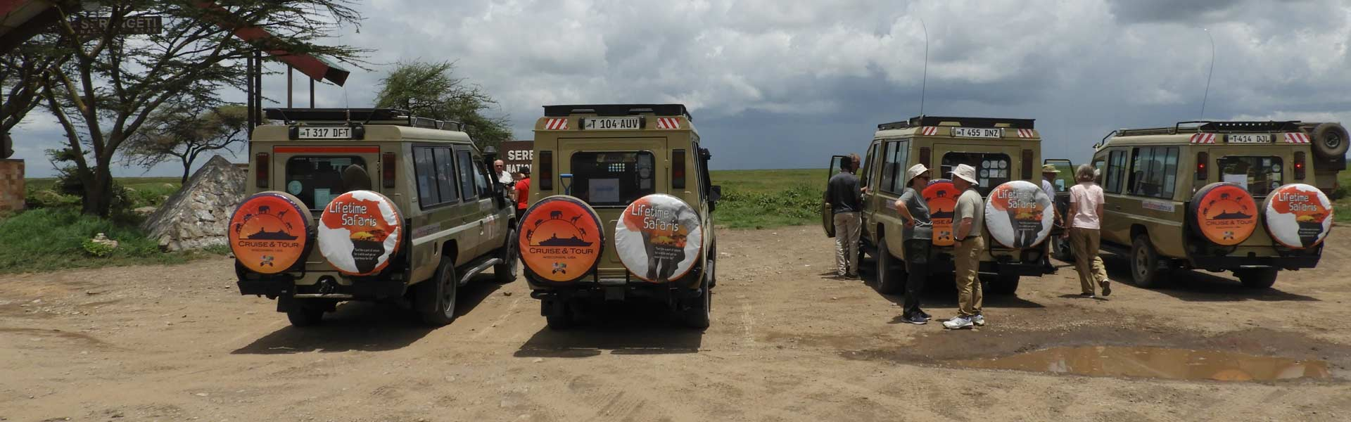 Best Time For Safari In Tanzania
