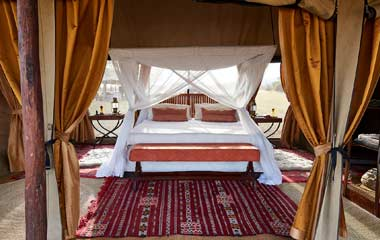 Tanzania Luxury Safari Tours