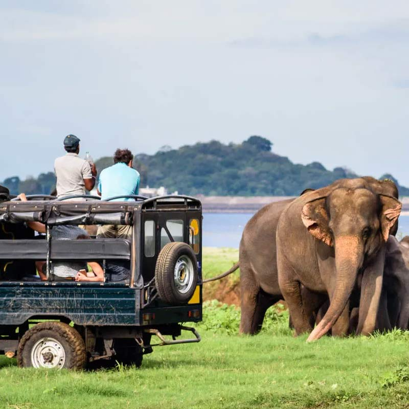 Tanzania Travel Requirements